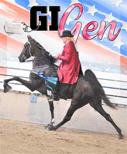 the walking horse report news